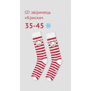 Шкарпетки Криска (полоска), р  40-45